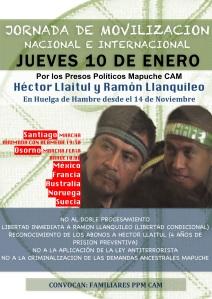 Afiche JORNADA apoyo a presos politicos mapuche en huelga de hambre